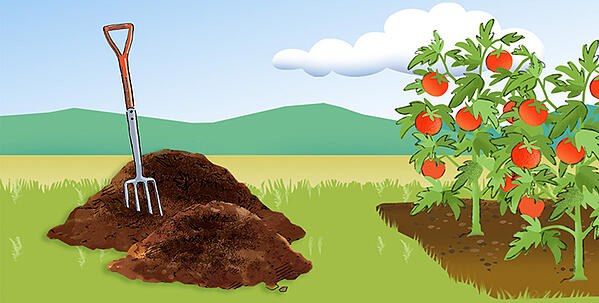 5061-compost-graphic