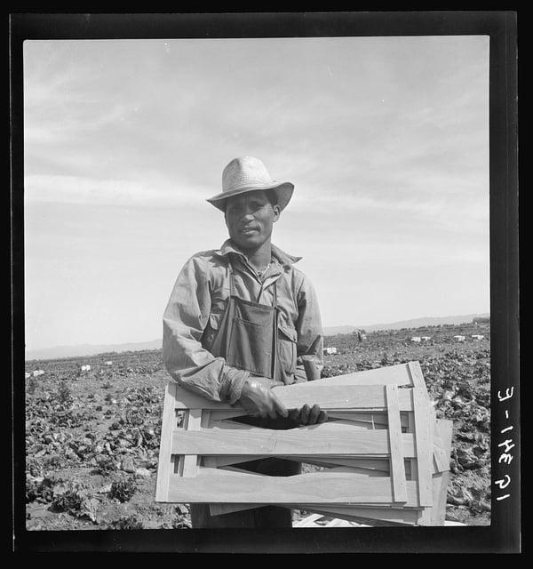 Filipino Laborer Imperial Valley CA
