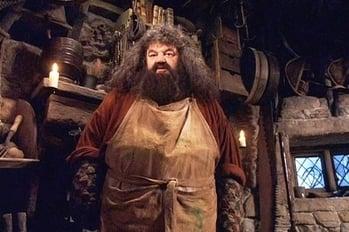 Hagrid2-721358-edited.jpg